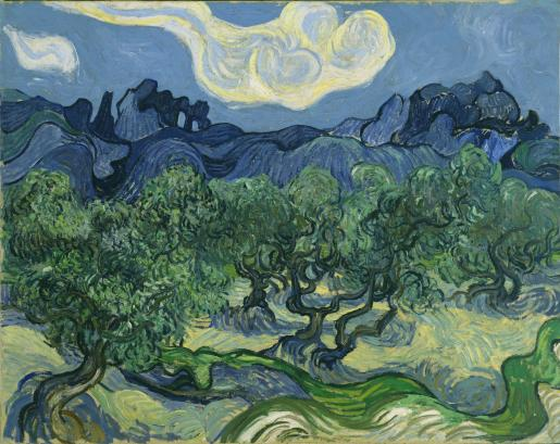 "Vincent Van Gogh ""The Olive Trees"" (1889)."